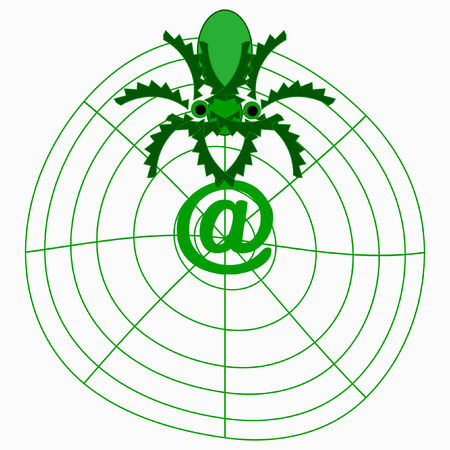 spider of the Internet Stock Vector - 4162441