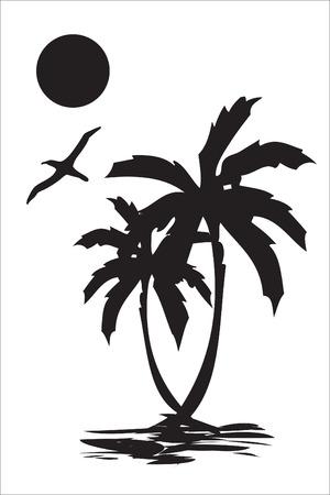 beach palm: Illustration of sea coast, palm tree and a seagull