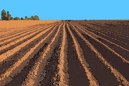 tillage: ilustraci�n vectorial tira plana de tierra arada extiende hasta el horizonte Vectores