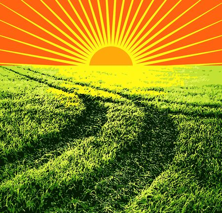steppe: illustration red sun on a background of green grass