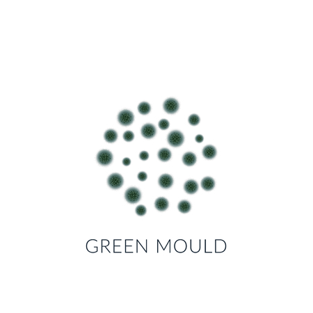 Green mold isolated on white background.Vector illustration.