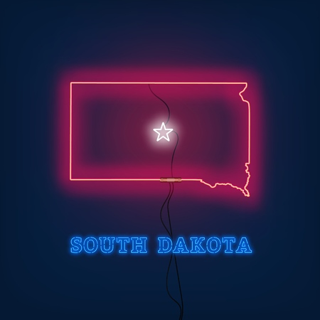 Neon map State of South Dakota on dark background. Vector Illustration.