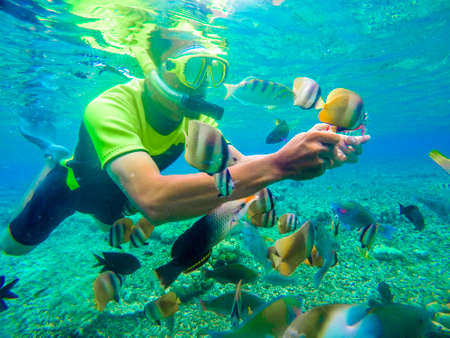 Bunaken Indonesia June 20, 2020 : Tourist snorkeling in the tropical water. Traveling, active lifestyle concept. snorkeling mask dive underwater with fishes school in coral reef sea