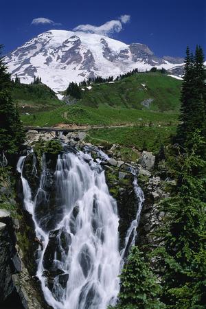 mt rainier: Mt. Rainier Mt. Rainier National Park Washington, USA