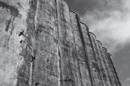 corroding: Birds Flying near Silos LANG_EVOIMAGES
