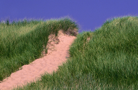 travelled: Path Through Sand Dunes, Panmure Island, Prince Edward Island, Canada