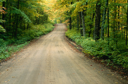travelled: Road, Muskoka, Ontario, Canada LANG_EVOIMAGES