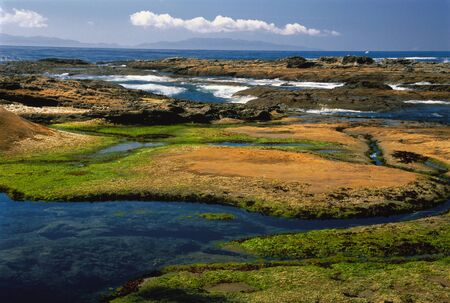 provincial tourist area: Overview of Botanical Beach Provincial Park, Vancouver Island British Columbia, Canada