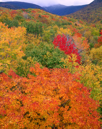 Appalachian Mountains, White Mountain National Forest, New Hampshire, USA