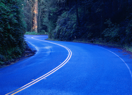 curve road: Curved Road, Prairie Creek Redwood State Park, California, USA LANG_EVOIMAGES