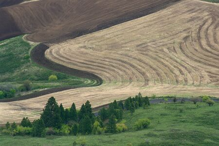 non: Field Seen from Steptoe Butte, Washington State, USA