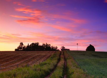 non: Dawn, Rural Alberta