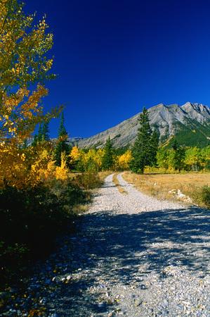 gloria: White Goat Wilderness Area, Alberta, Canada