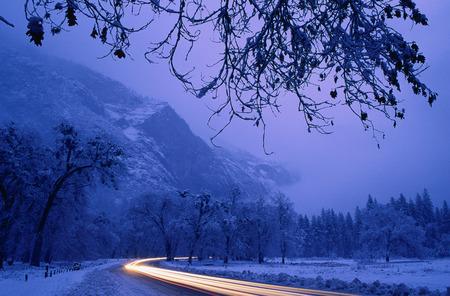 curve road: Streaking Lights on Road, Yosemite National Park, California, USA LANG_EVOIMAGES