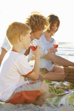 Family Having Picnic LANG_EVOIMAGES