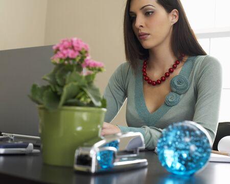 homeoffice: Woman Using Lap Top