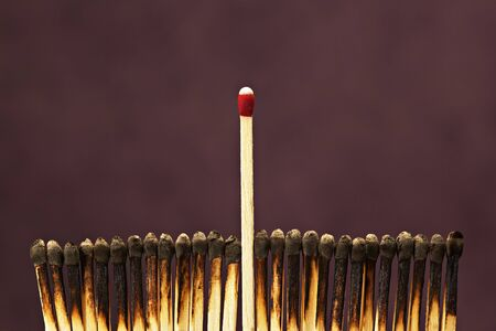 burned out: One Unlit Match Among Row of Burnt Matches