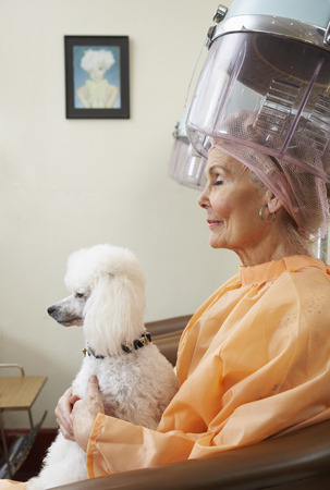 hairdryer: Woman in Hair Salon with Poodle