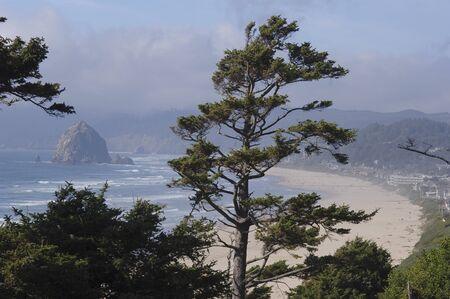 oceanic: Overview of Coast, Oregon, USA