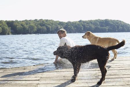 wetting: Man on Dock with Dogs, Three Mile Lake, Muskoka, Ontario, Canada