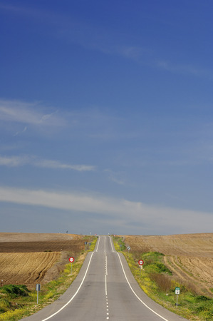 non: Overview of Road through Fields, Andalucia, Spain LANG_EVOIMAGES