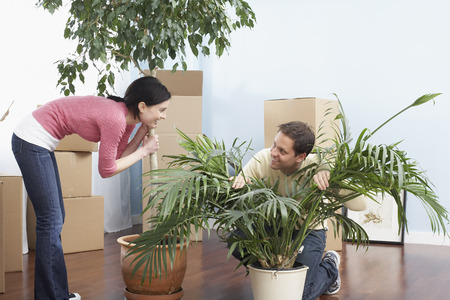 moving box: Couple with House Plants in New Home LANG_EVOIMAGES