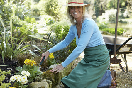 wheel barrel: Woman Gardening