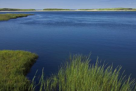 Overview of Wetlands, Grays Beach, Yarmouth, Cape Cod, Massachusetts, USA