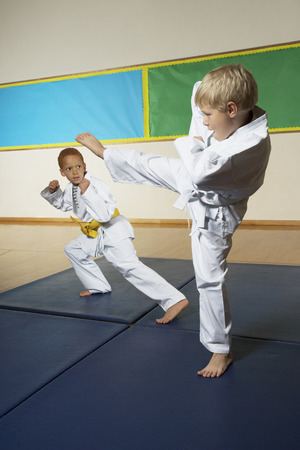 Boys Practicing Karate LANG_EVOIMAGES