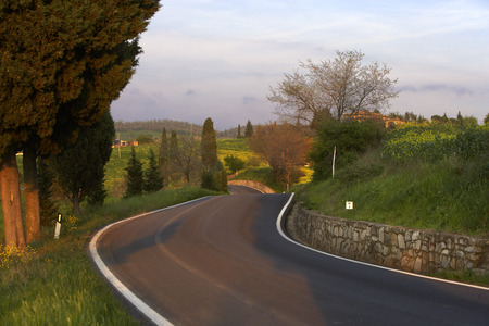 Road near Montecchiello, Tuscany, Italy LANG_EVOIMAGES