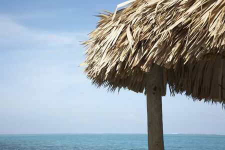 palapa: Close-up of Palapa by Ocean, Belize LANG_EVOIMAGES