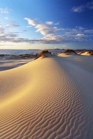 ripple: Dunes on Coast, St Helens, Tasmania, Australia