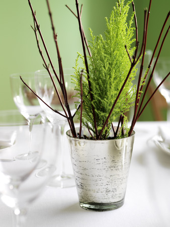 Miniature Christmas Tree as Table Centerpiece LANG_EVOIMAGES