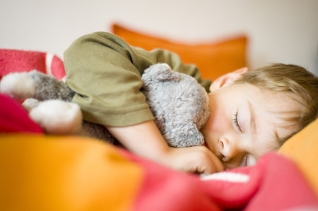 Boy Sleeping While Holding Stuffed Animal