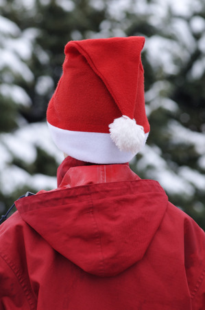 Rear-View of Person Wearing Santa Hat
