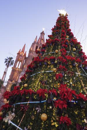 san miguel arcangel: Árbol de Navidad, San Miguel de Allende, Guanajuato, México