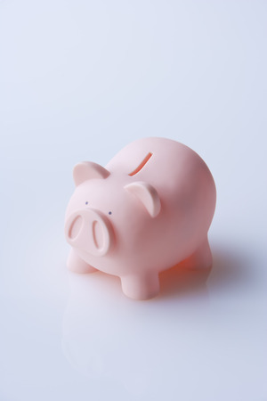 Piggy Bank LANG_EVOIMAGES