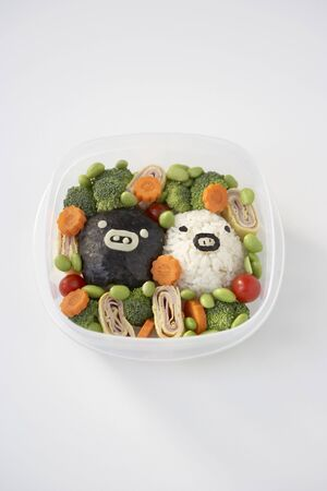 Seaweed and Rice with Vegetables in Container