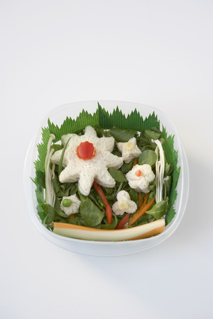 cutouts: Sandwiches and Salad in Container LANG_EVOIMAGES