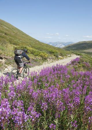 adventuresome: Mountain Biking, Montana Mountain, Carcross, Yukon, Canada