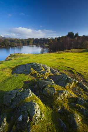 Tarn Hows, Lake District, Cumbria, England LANG_EVOIMAGES