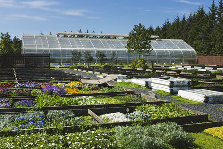 conservatories: Greenhouse in Flower Farm