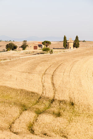 san quirico d'orcia: Cappella di Vitaleta framed by Mediterranean Cypress Trees (Cupressus sempervirens) near Barley Field in Summer,San Quirico dOrcia,Val dOrcia,Tuscany,Italy LANG_EVOIMAGES