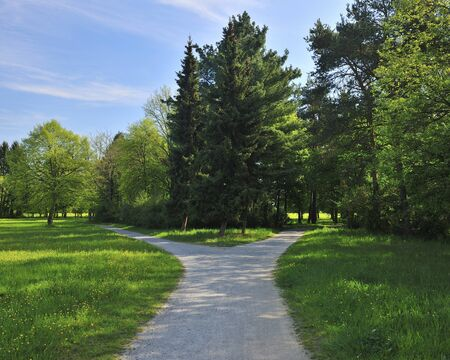forked road: Forked Pathway with Meadow in Spring,Aschaffenburg,Bavaria,Germany LANG_EVOIMAGES