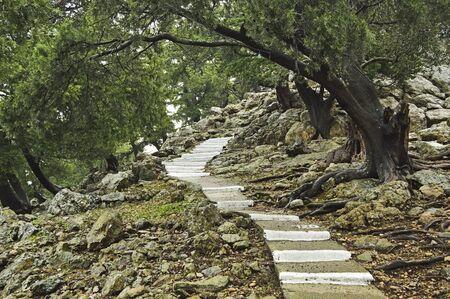tsambika: Steps to Moni Tsampika, Rhodes, Dodecanese, Aegean Sea, Greece, Europe
