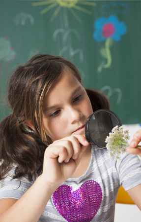 Girl in classroom examining flower with magnifying glass,Germany LANG_EVOIMAGES