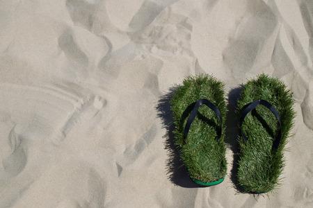 flip flops: Flip flops lined in green grass on beach, Germany