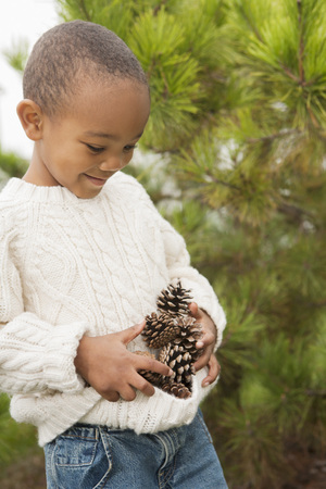 pinaceae: Boy Collecting Pine Cones in Sweater, Maryland, USA