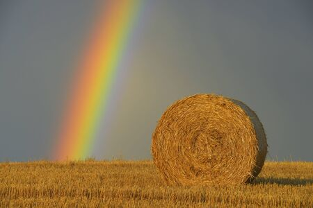 Straw roll on stubblefield with rainbow, Hesse, Germany, Europe