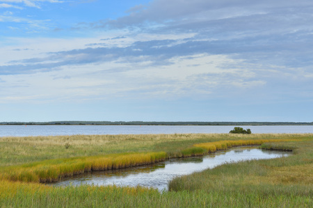 Lake with Reeds at shoreline  in Summer, Vitte, Baltic Island of Hiddensee, Baltic Sea, Western Pomerania, Germany